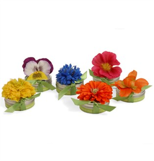 Spring Favors Bloembox Edible Flower Seed Favors