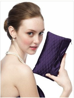 Dessy Evening Clutch Purse in Concord
