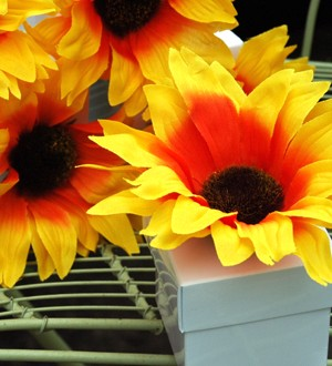 Sunflower Favors - Sunflower Favor Boxes