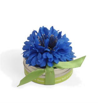 Spring Favors Tiny Tins Cornflower Flower Seed Favors with Edible Flowers!